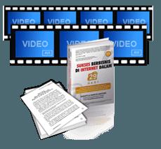 Buku Sukses Berbisnis Internet 29 Hari