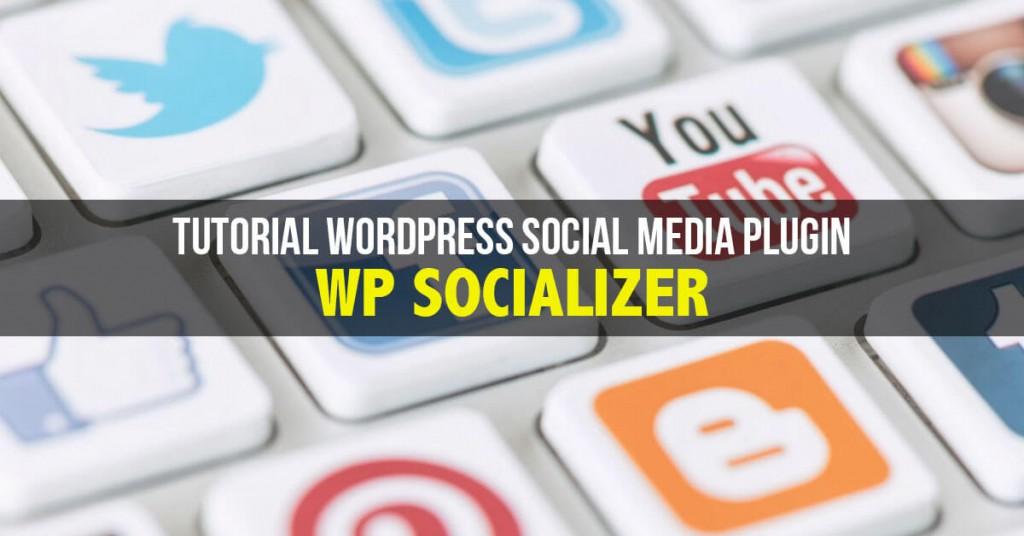 wordpress-social-media-plugin-wp-socializer